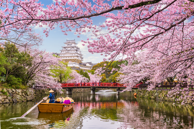Japan: food and travel guides