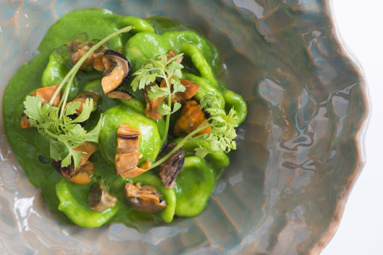 Orecchietta with watercress purée, bergamotto and mussels
