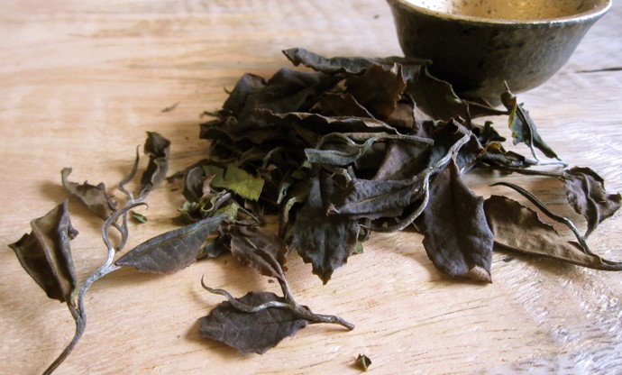 Reading the leaves: the world of exotic tea