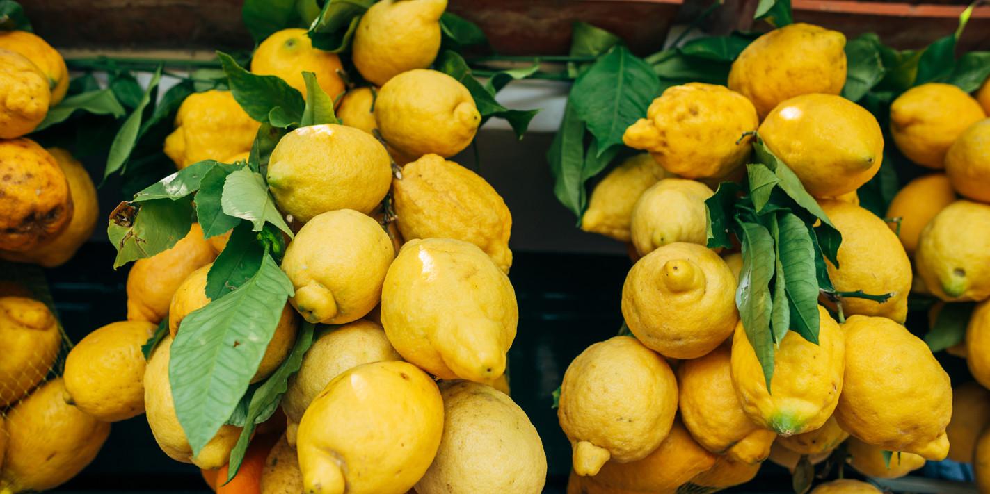 Zesty business: the story of Amalfi lemons