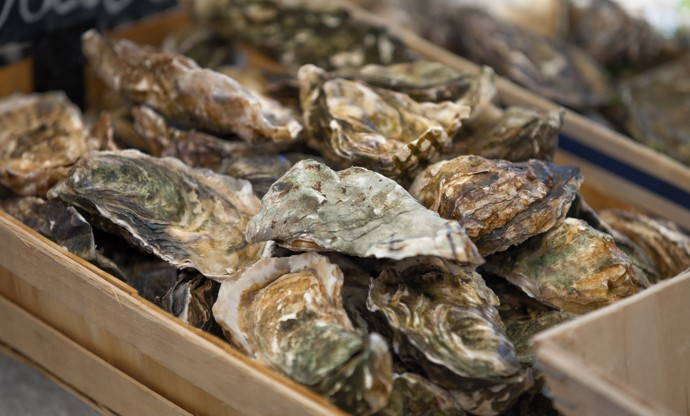 Canada coast to coast: the country's best fish and seafood