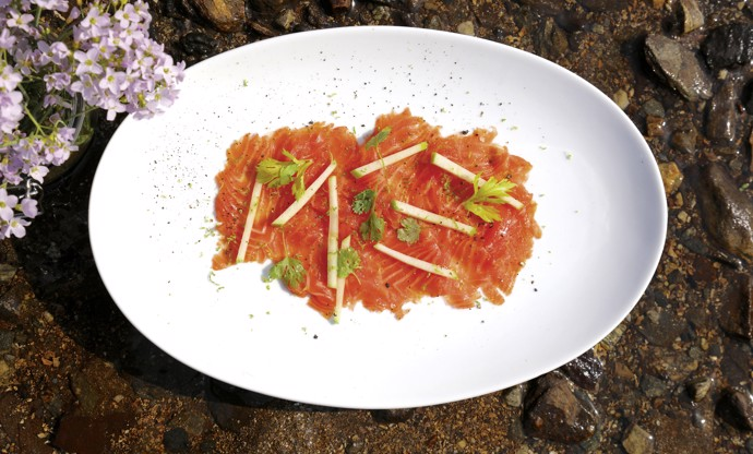 Cured Fjord Trout with coriander, celery, lime and apple salad