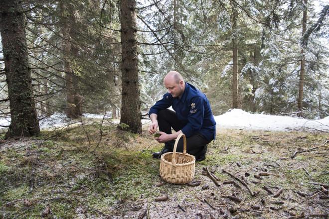 Mountain culture: foraging with Heinrich Schneider
