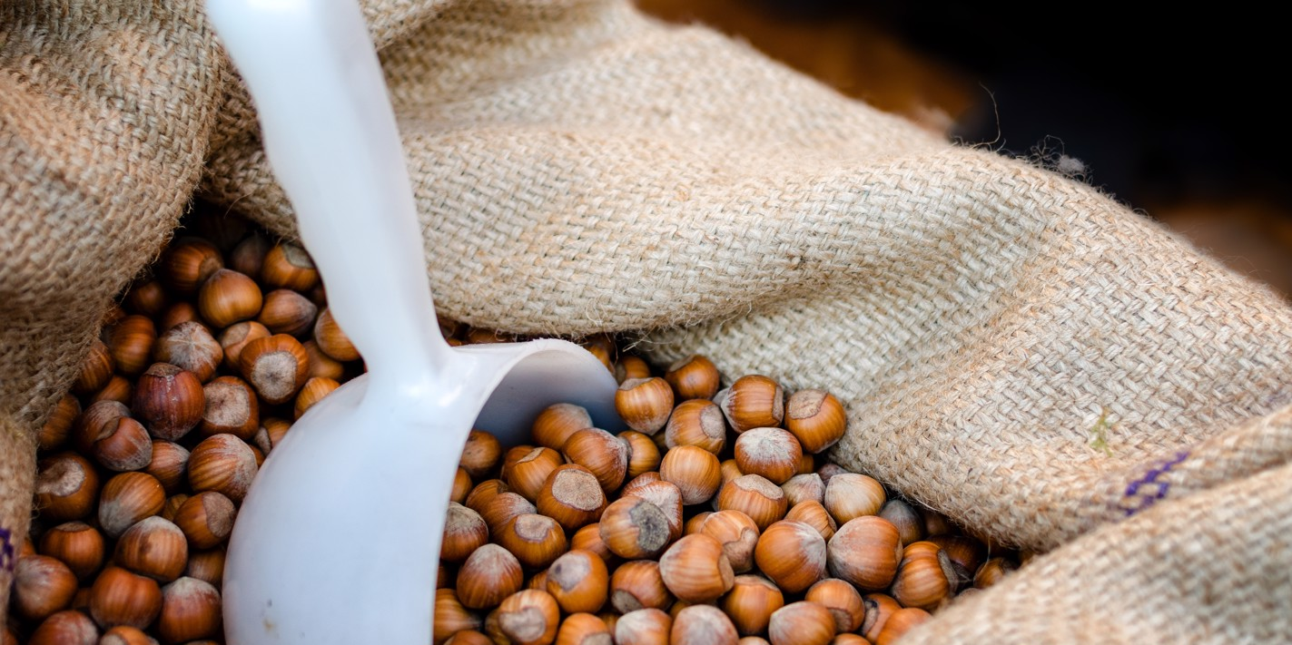 Nuts about nuts: the hazelnuts of Piedmont