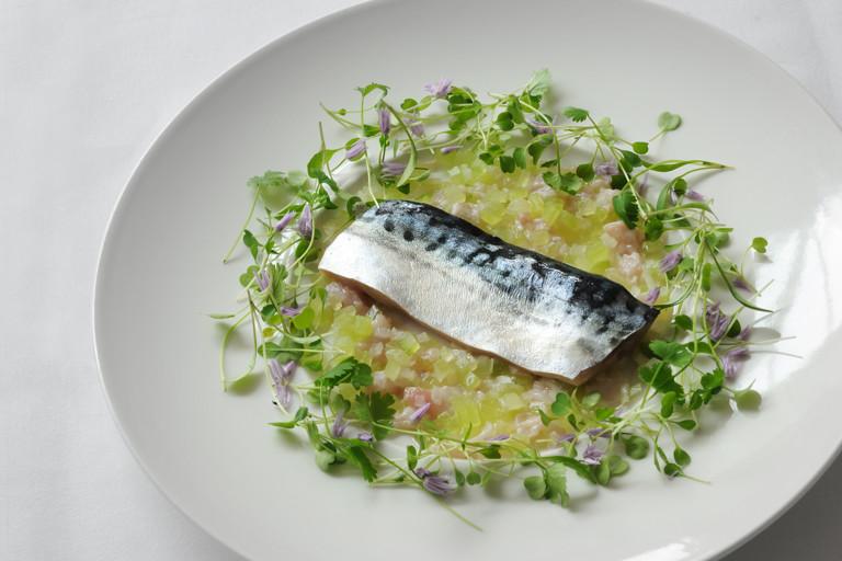 Mackerel confit, cucumber tartare and lemon sherbet dressing