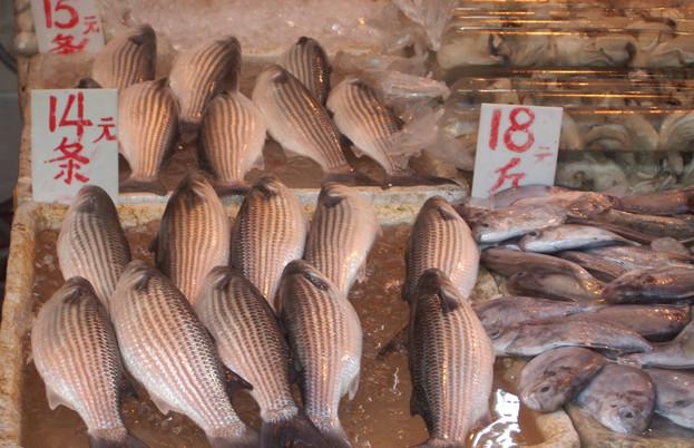 Fish at Hong Kong market