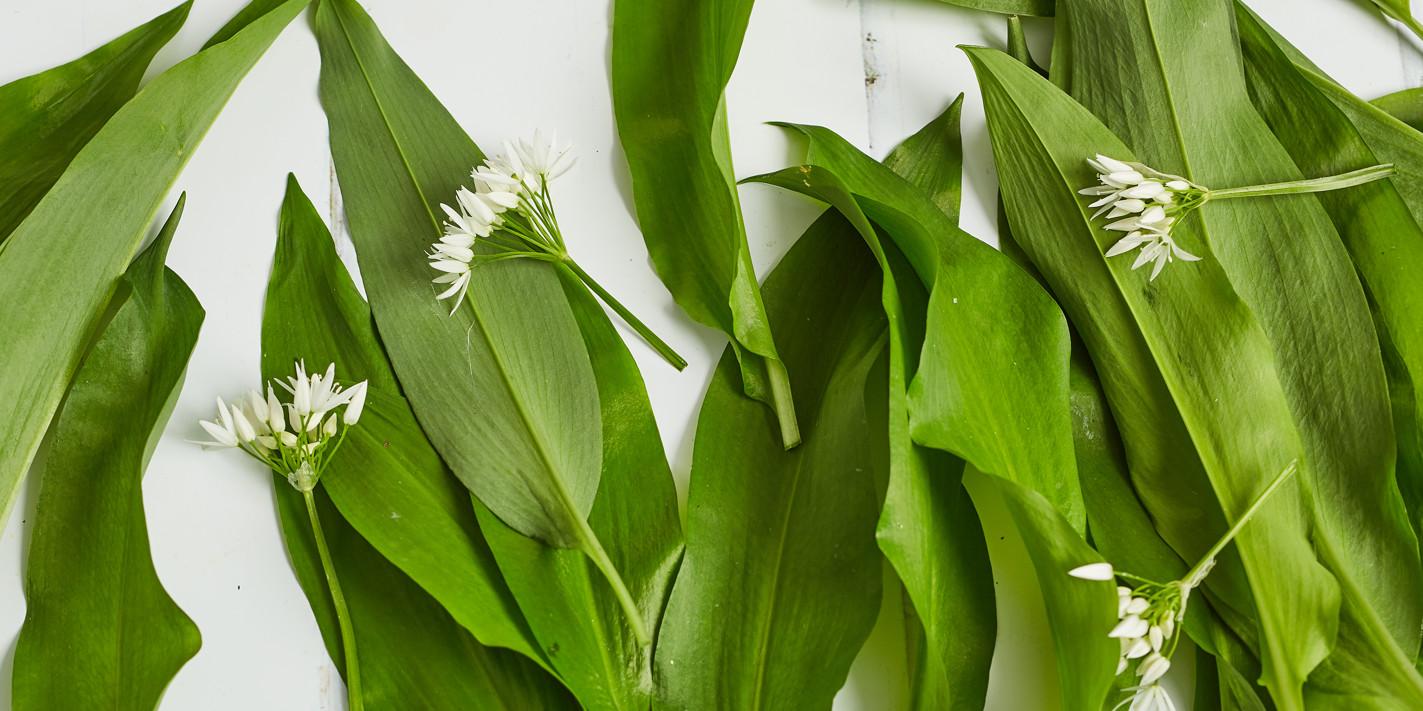 How to cook wild garlic