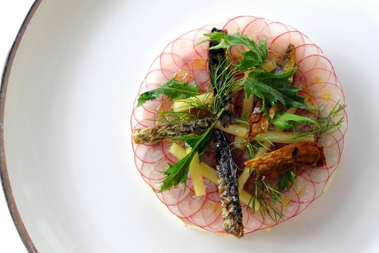 Ceviche of Cornish mackerel with a light horseradish cream, pickled cucumber and white radish