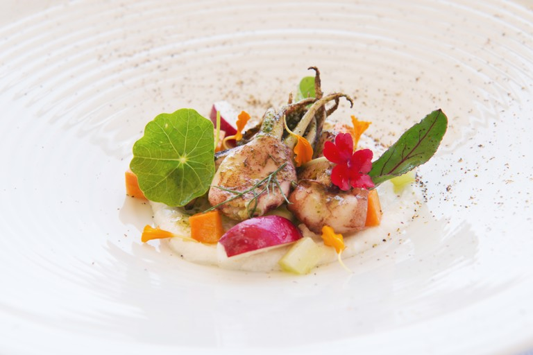 Grilled squid with aromatic herbs and smoked ricotta cream