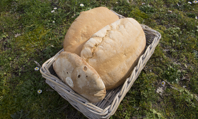 Pane Sciocco: Tuscany's favourite bread