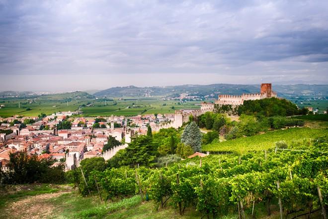 The wines of Veneto