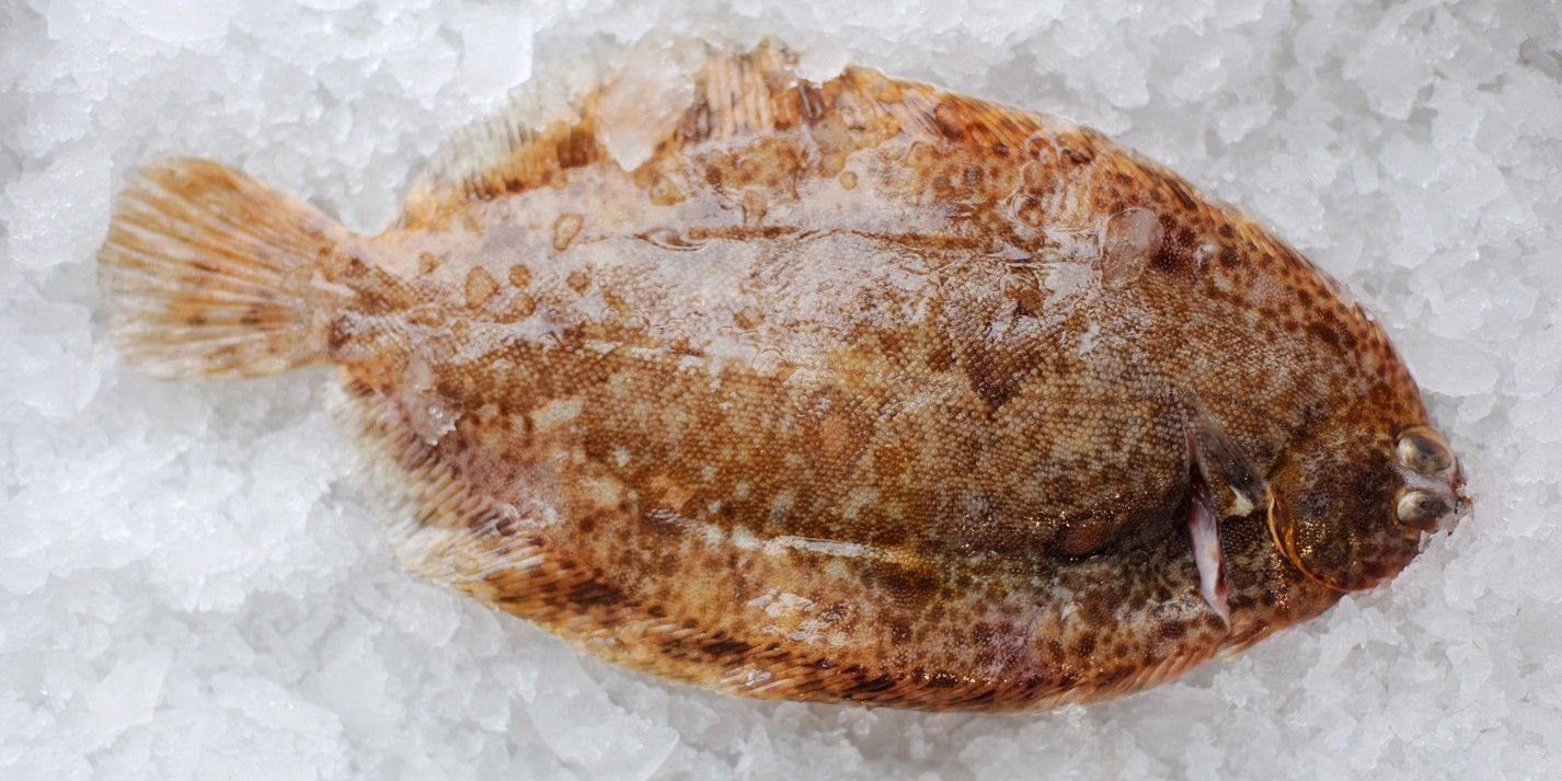 Fort on food: fish