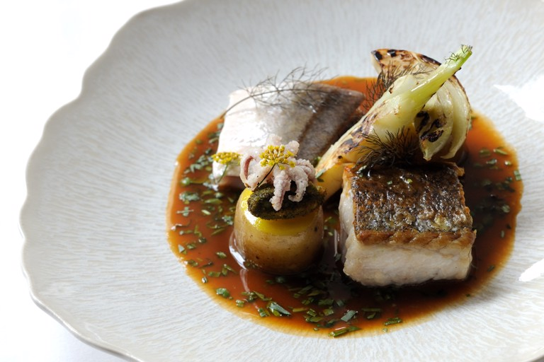 Fish stew with fillets of hake and gurnard