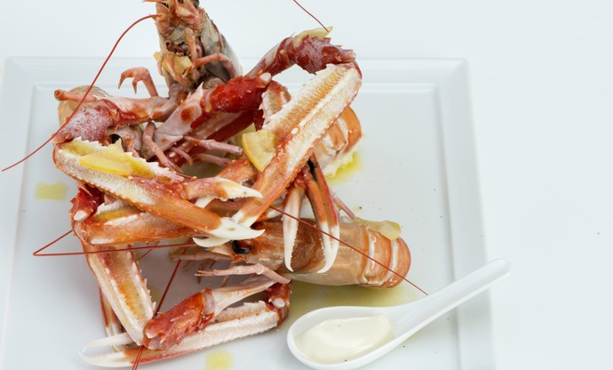 Steamed langoustines with oil, lemon and light mayonnaise
