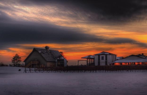 Inniskillin Niagara Estate Winery