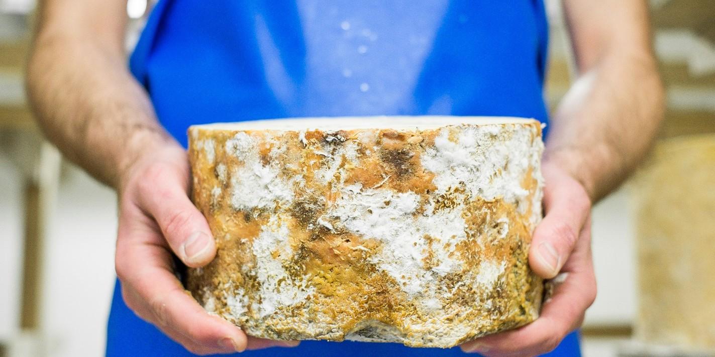 Northern Ireland's emerging cheese scene
