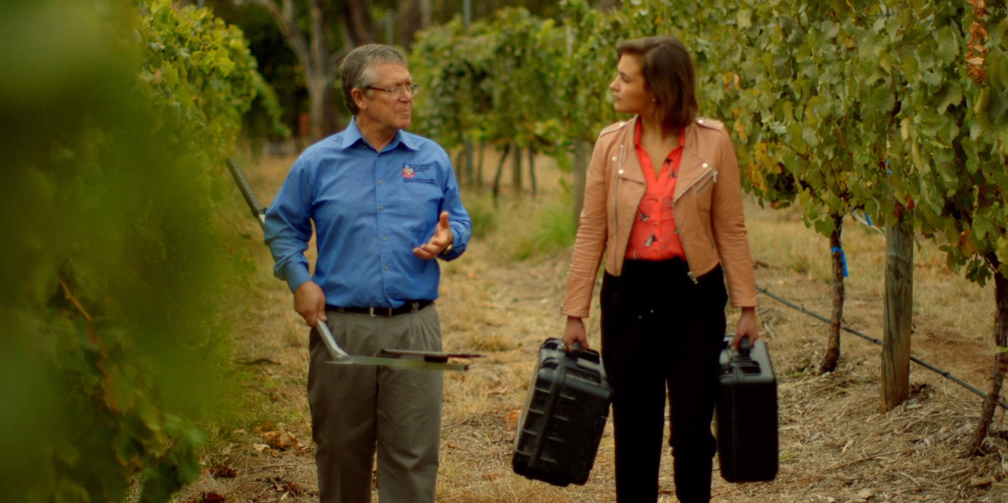 The Wine Show: episode twelve – climate change