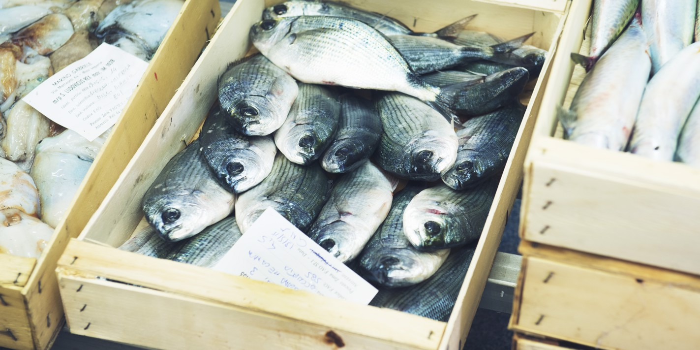 How to cook fish and seafood