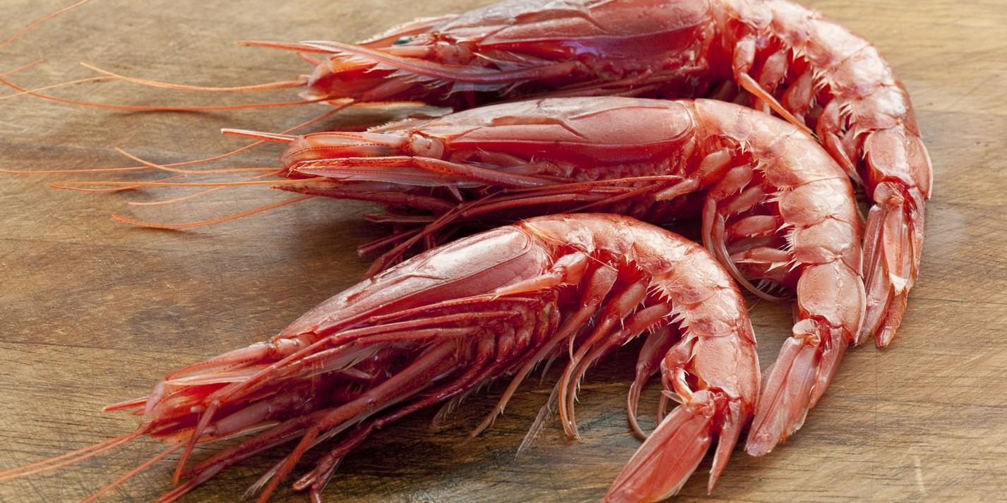 Mediterranean Prawns / Red prawns
