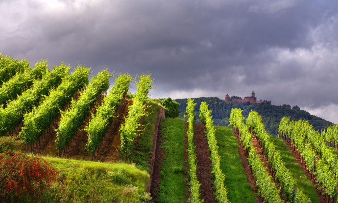 The other faces of Alsace