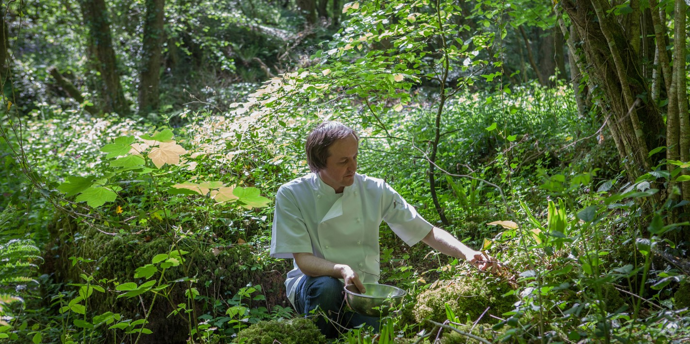 Foraging with Chris Harrod