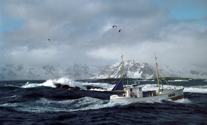 Norwegian cod fishing: a day in the life
