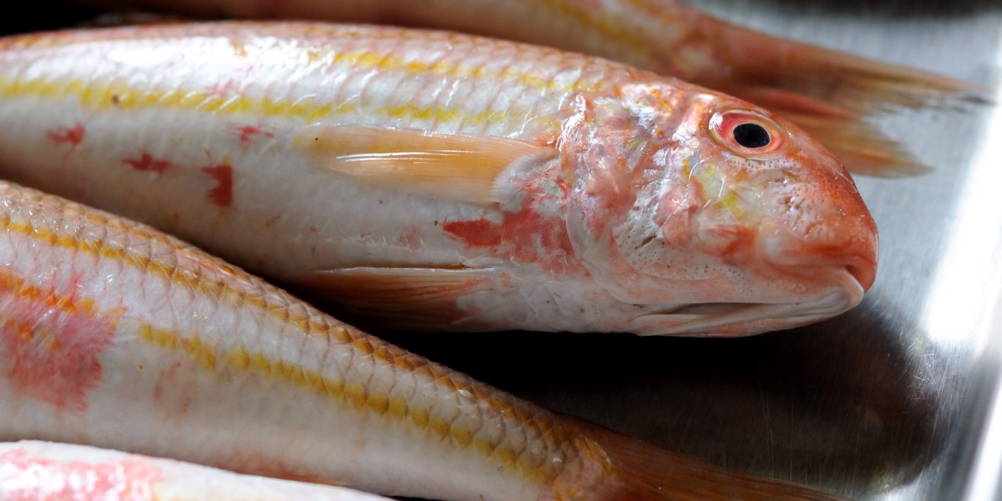 How to cook red mullet sous vide