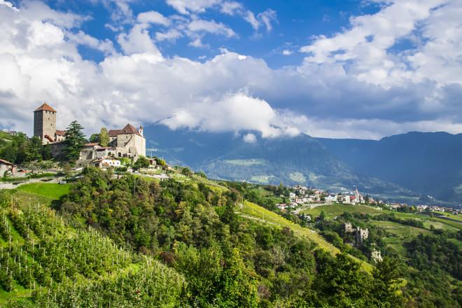 The wines of Trentino