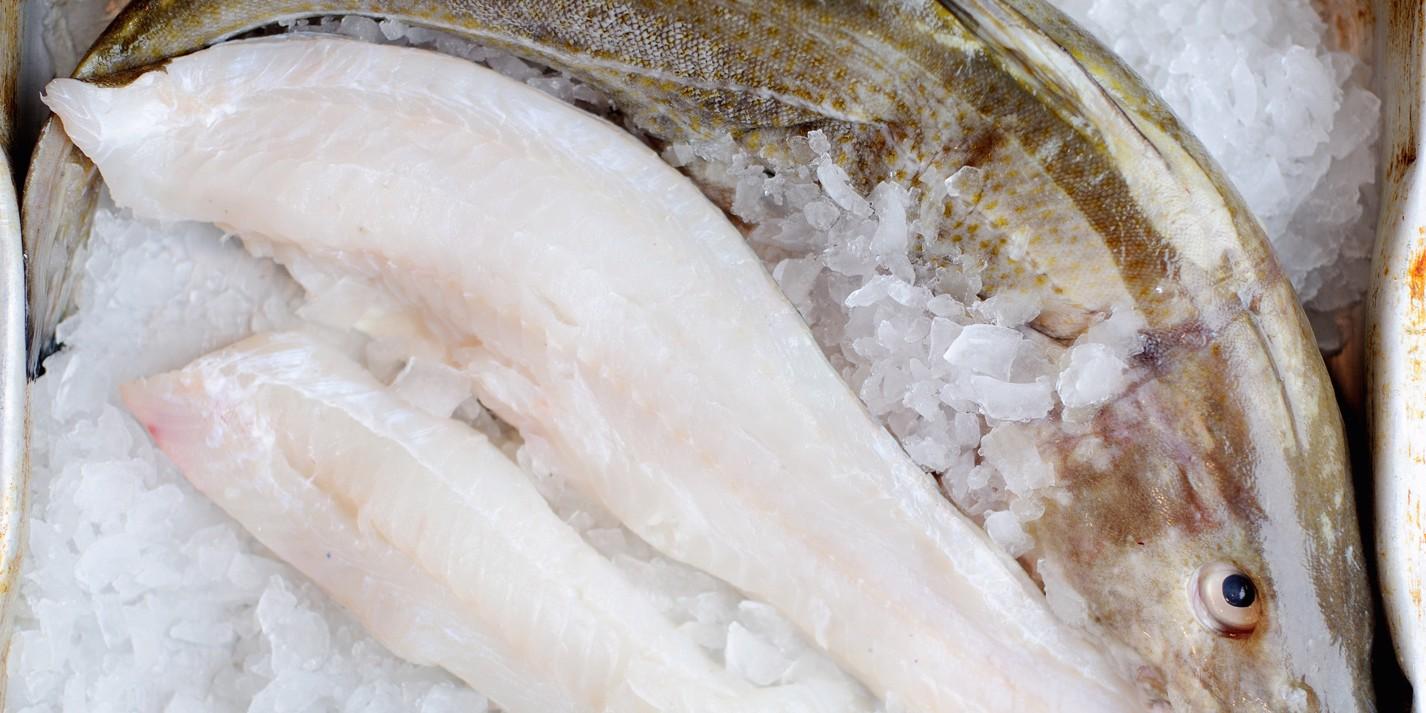 The Great British cod dilemma