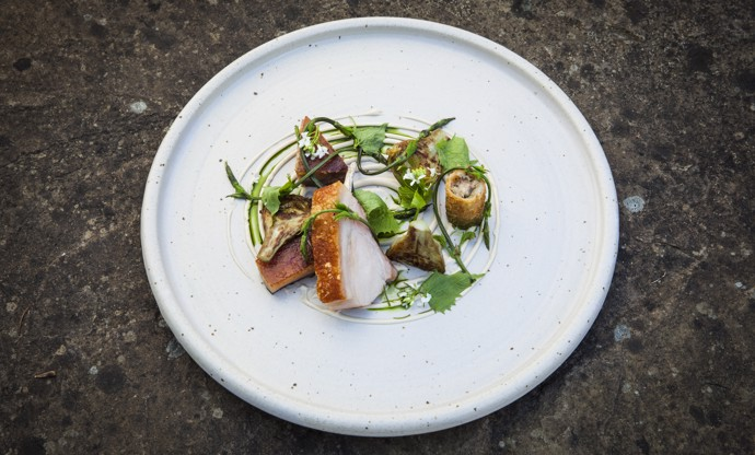 Suckling pig with artichokes, pine nut purée and hop shoots